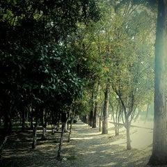 Photo taken at Parque De Paseo De Los Pirules by Howl R. on 12/7/2012
