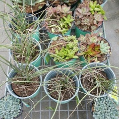 Photo taken at Lowe's Home Improvement by Cynthia R. on 9/9/2015