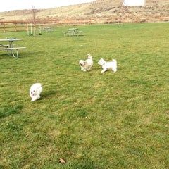 Photo taken at Badger Mountain Dog Park by Cynthia E. on 11/5/2012