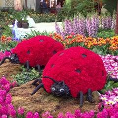 Photo taken at Bellagio Conservatory & Botanical Gardens by Vino Las Vegas on 5/1/2013