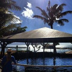 Photo taken at Maui Ocean Center, The Hawaiian Aquarium by Chris N. on 1/6/2013