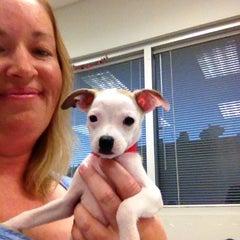 Photo taken at West LA Animal Shelter by Julie W. on 9/13/2013