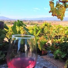 Photo taken at Viansa Winery by Rachael L. on 10/21/2013