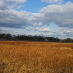 Photo taken at Marshlands Conservancy by Piper C. on 11/29/2013