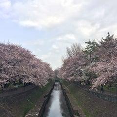 Photo taken at 尾崎橋 by ヒカル on 4/1/2016