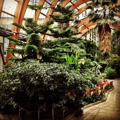 Photo taken at Winter Gardens by Rachael M. on 1/24/2013