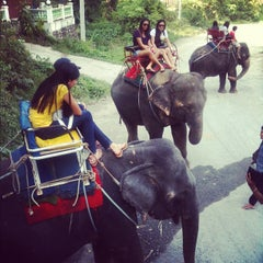 Photo taken at Phuvaree Resort Phuket by Nicolo Yuri A. on 1/14/2013