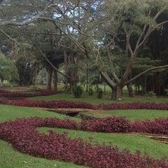 Photo taken at Jardim Botânico de São Paulo by Denise P. on 7/13/2013