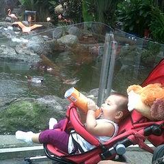 Photo taken at Batu Secret Zoo by desy k. on 3/14/2013