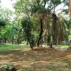 Photo taken at Taman Hutan Tebet by henry d. on 11/21/2015