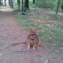 Photo taken at Moore State Park by Elizabeth S. on 8/4/2014