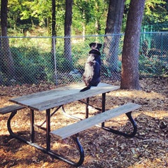 Photo taken at Monroe Place Dog Park by Sean T. on 10/21/2012