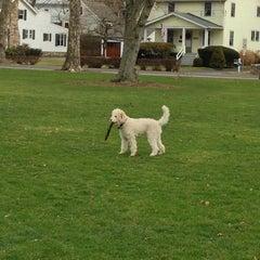 Photo taken at Loughlin Avenue Playground by Tara R. on 12/24/2012
