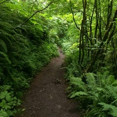 Photo taken at Twin Falls Trail by Neil on 6/29/2014