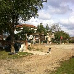 Photo taken at Kepenekli Köyü by Volkan E. on 10/27/2015