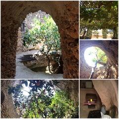 Photo taken at Underground Gardens - Baldasare Forestiere by Eduardo S. on 8/8/2014