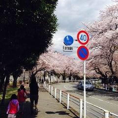 Photo taken at 富岡総合公園 by 360Shiggy on 4/5/2014