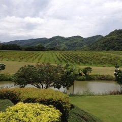 Photo taken at PB Valley Khao Yai Winery by Jantarawan s. on 10/6/2012