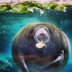 Photo taken at Columbus Zoo & Aquarium by Ryan P. on 5/23/2013