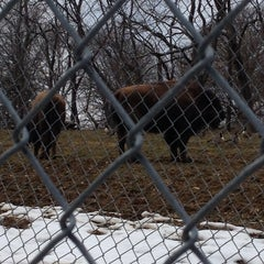 Photo taken at South Park Game Preserve by Melissa F. on 3/1/2014