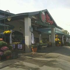 Photo taken at Nino Salvaggio International Marketplace by Christina M. on 9/24/2012