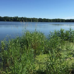 Photo taken at Cleary Lake Regional Park by Tracy M. on 7/18/2015