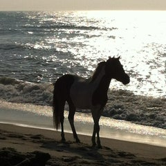 Photo taken at Assateague Island National Seashore (Maryland) by Mike A. on 6/25/2013
