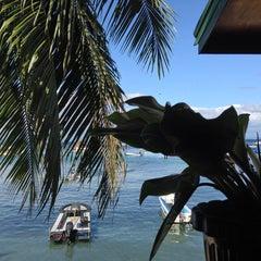 Photo taken at Capt'n Gregg's Dive Resort by Alexander O. on 1/21/2013