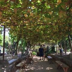 Photo taken at Underground Gardens - Baldasare Forestiere by Sham K. on 8/2/2015