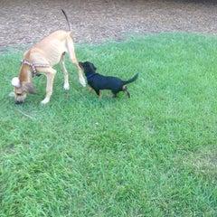 Photo taken at Al Lopez Dog Park by Scott on 7/31/2014