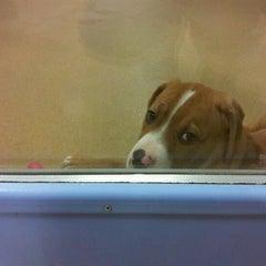 Photo taken at Wisconsin Humane Society by Mia S. on 11/2/2012