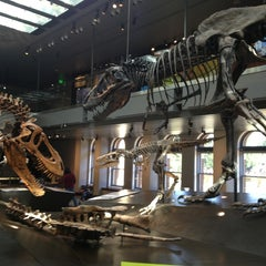 Photo taken at Natural History Museum of Los Angeles County by Ted D. on 1/22/2013