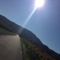 Photo taken at Talty Winery by Jade E. on 11/6/2014