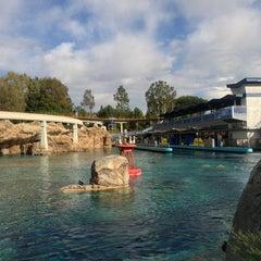 Photo taken at Finding Nemo Submarine Voyage by Shaun B. on 1/1/2013