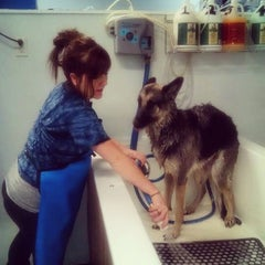 Photo taken at Woody's Dog Wash by Melissa L. on 12/10/2015