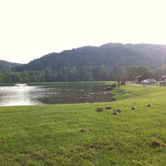 Photo taken at Barboursville Park by Monther A. on 8/30/2014
