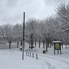 Photo taken at Harris Riverfront Park by Monther A. on 3/5/2015