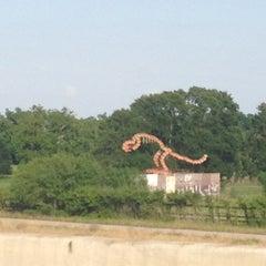 Photo taken at Dino Sculpture Monument by Kimberlee K. Heinsohn Henao H. on 5/19/2013