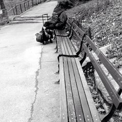 Photo taken at Central Park Duck Pond by Jared S. on 3/22/2013