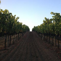Photo taken at Saralee Vineyards by William A. on 9/30/2012