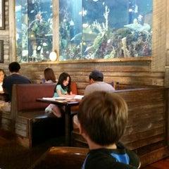 Photo taken at Islamorada Fish Company by Jenna H. on 4/27/2014
