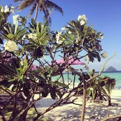 Photo taken at P. P. Erawan Palms Resort (พี พี เอราวัณ ปาล์ม รีสอร์ท) by Alexandra M. on 1/15/2015