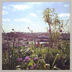 Photo taken at John Lewis Roof Garden by Holly G. on 5/3/2014