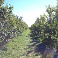 Photo taken at Mack's Apples by Ang W. on 10/13/2012