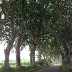 Photo taken at The Dark Hedges by Christopher W. on 7/19/2014