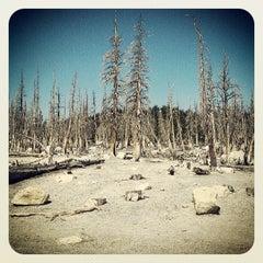 Photo taken at Horseshoe lake by David G. on 6/4/2013