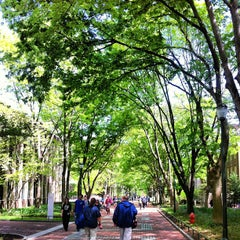 Photo taken at Locust Walk by Steve P. on 4/30/2013