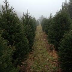 Photo taken at Oak Ridge Tree Farm by Mike G. on 12/2/2012