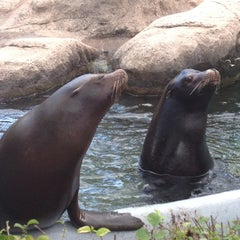 Photo taken at Bronx Zoo by Sam B. on 9/22/2012