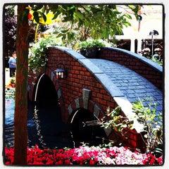 Photo taken at Bellagio Conservatory & Botanical Gardens by Shari B. on 6/7/2012
